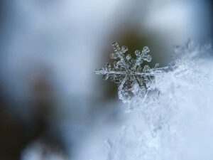 ledena dežela snežinka