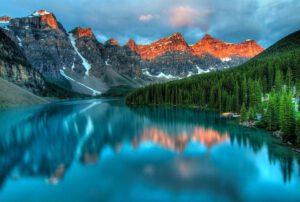 krnsko jezero drevesa