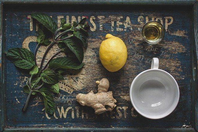 zdravilne rastline limona