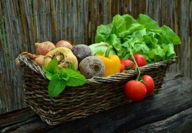 Sajenje – nasveti za pravilno delo na vrtu
