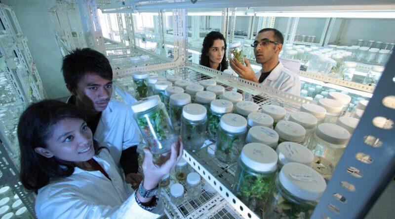 Inkubator za laboratorij zagotavlja optimalne pogoje